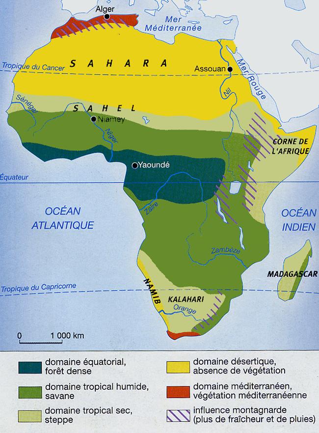 Carte Afrique Foret.Afrique Carte